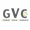 Global Voice SIM